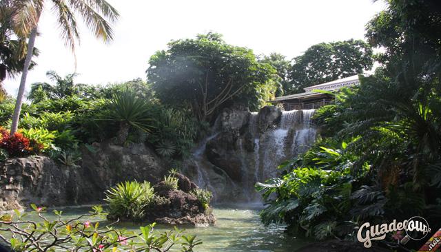 Jardin Botanique Deshaies sur Guadeloupe.net